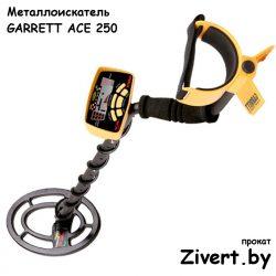 Аренда металлоискателя в Минске