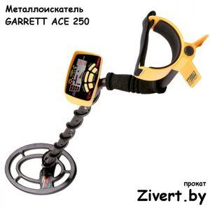 Аренда металлоискателя Garrett ACE 250 в Минске