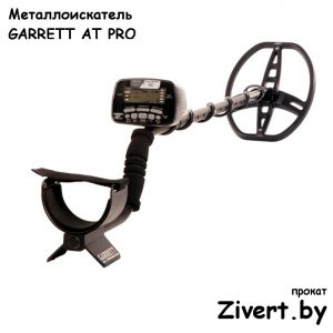 взять напрокоат подводный металлоискатель Минск