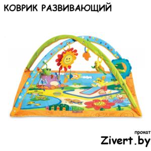 Аренда развивающих ковриков