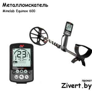 Аренда металлоискателя Equinox
